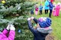 Bērni pušķo savu egli rotaļu laukumā Priekulē 16.12.2016.